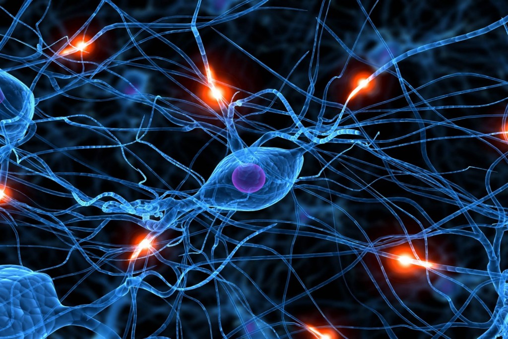 Graphic of a network of neurons in the brain