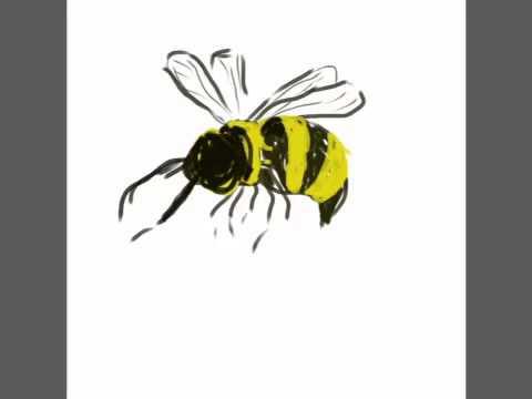 Honey Project Bee