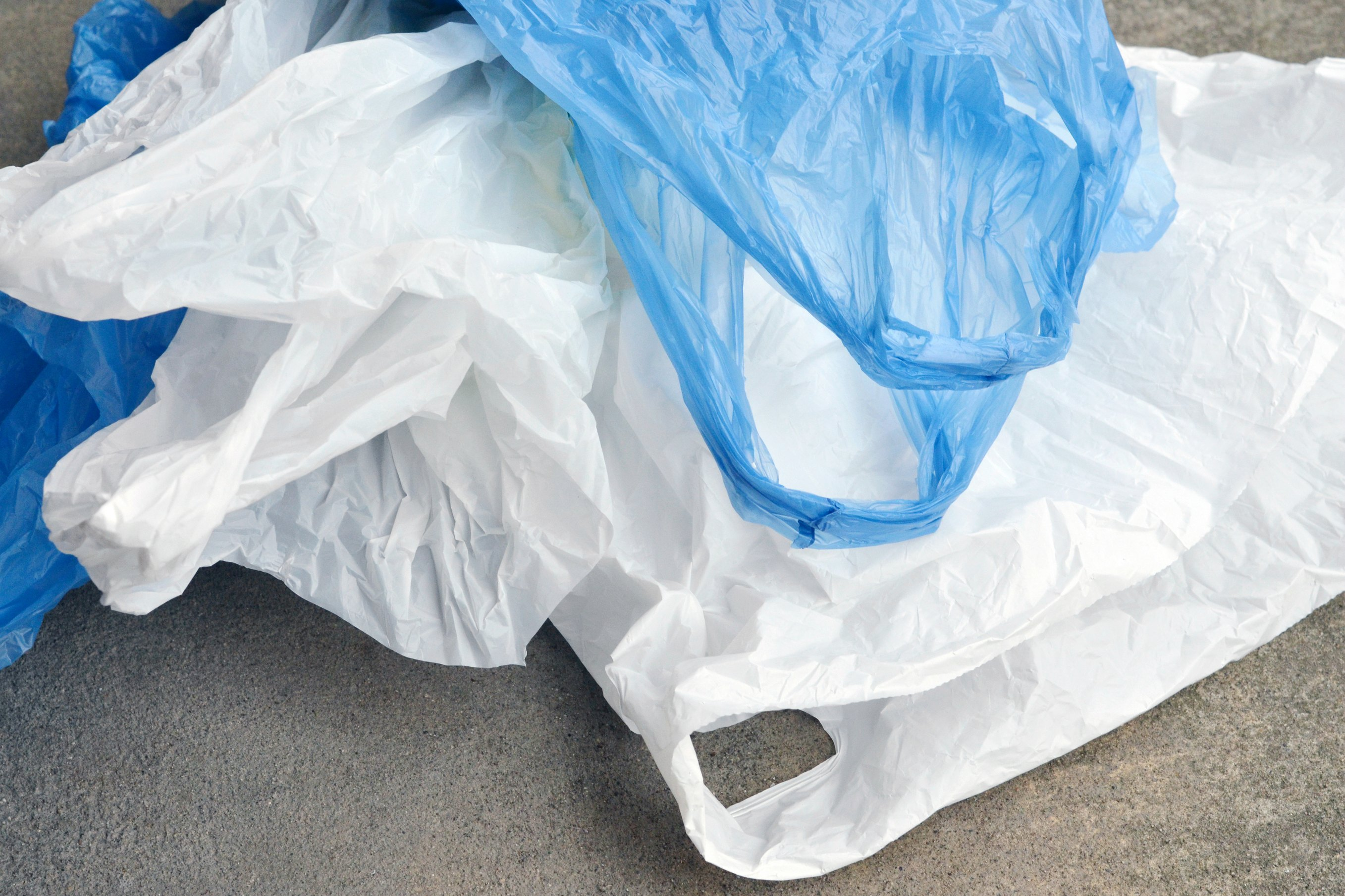 English shoppers ditch the carrier bag - News - Cardiff ...
